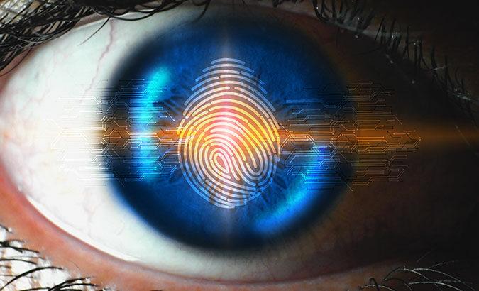 Optical Fingerprint 01